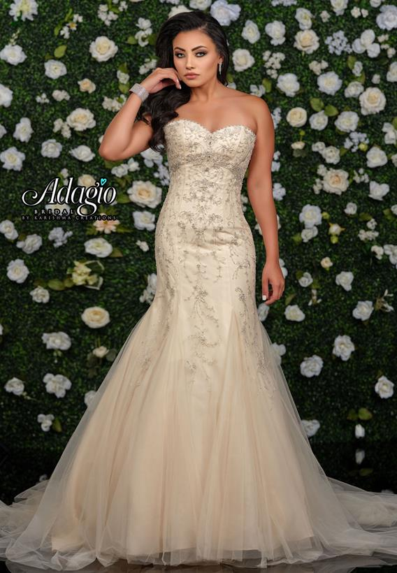 Beaded Tulle Champagne,Ivory,White W9349